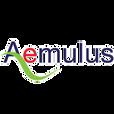 aemulus logo_edited.png