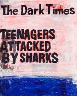 Teenagers-Shark