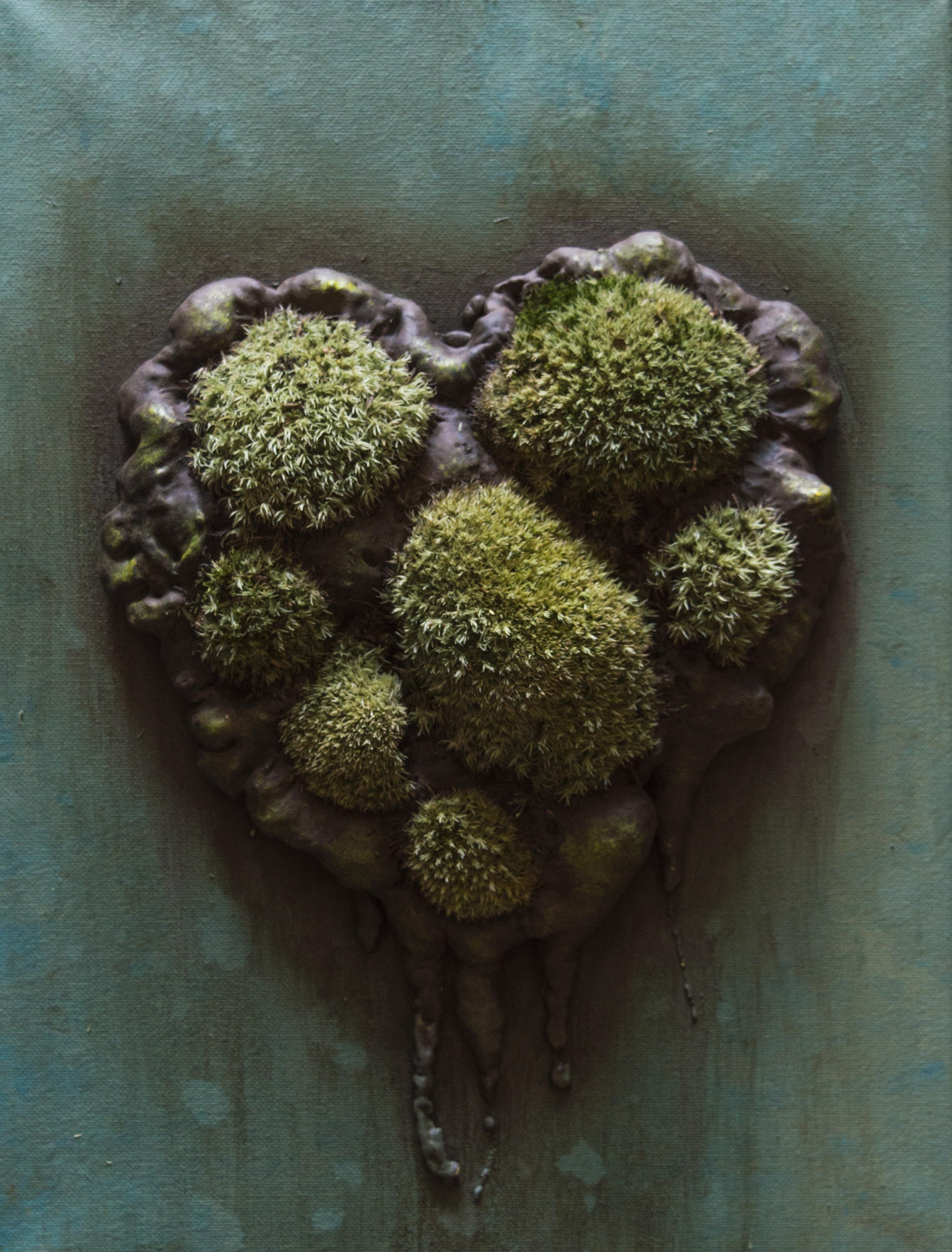 Moss Art 7