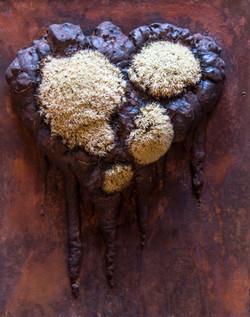 Moss Art 3