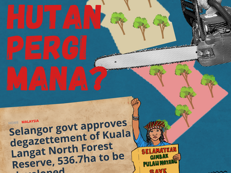 PHSKLU's Coalition Strongly Condemns the Degazettement of Kuala Langat North Forest Reserve (KLNFR)