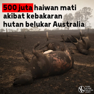 Australia-Indonesia-5.png