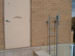 Ladder lifeline
