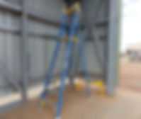 Ladder audit