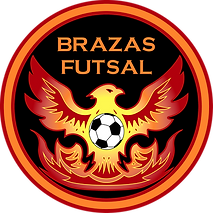 USETHISONEBraza_logo_300dpi.png