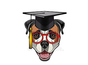 american-bulldog-graduate-graduation-cap-hat-graduation-lettering-vector-american-bulldog-