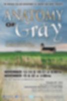 Anatomy of Grey Poster.jpg