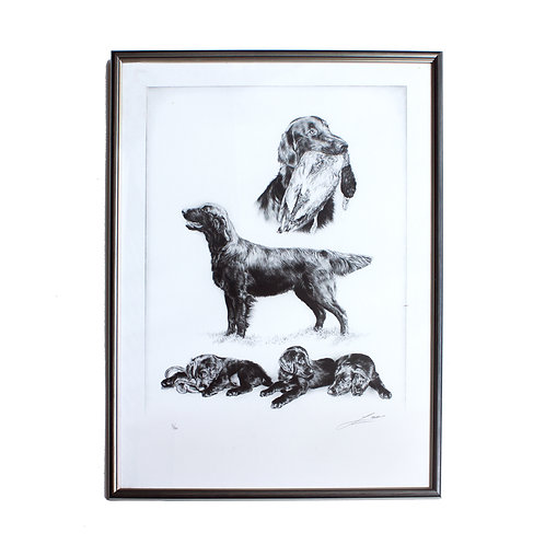 Lovely numbered framed Lithography of hunting dogs by unknown artist