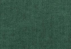 Breton Evergreen