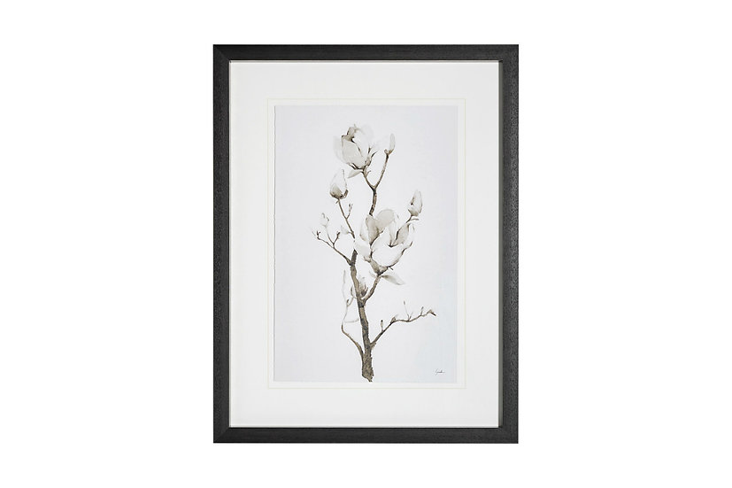 Magnolia II - Wall Art