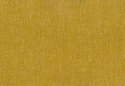 Campbell Mustard
