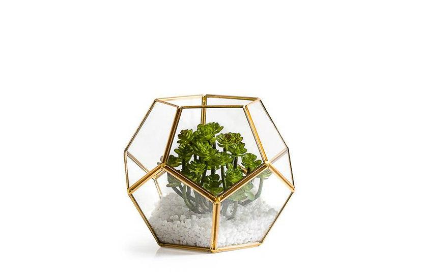 Oro - Sphere Terrarium