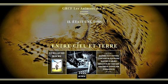 GRCF Les Animaux des R, Guillaume Roche, Plan de site, Site web, Site internet