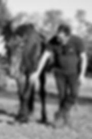 GRCF Les Animaux des R, Guillaume Roche, Ses compagnons, Les retraités, Apache-2