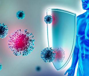 Immune System Biology.jpg