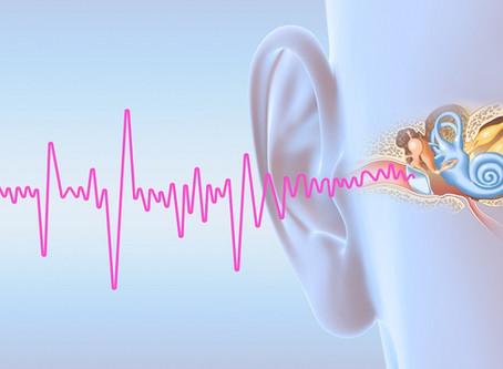 Tinnitus: Wie Ayurveda das Leiden stillen kann!