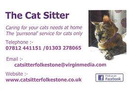 Folkestone Cat Sitter