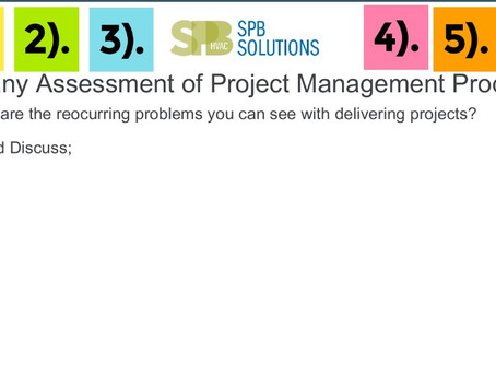Company Assessment of the Project Management Processes