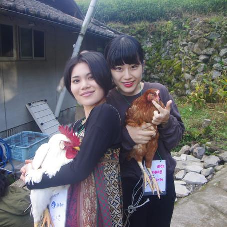 生きてる鶏を絞めて命を頂く貴重な体験ができるゲストハウス、福岡のヨガリトリート宿
