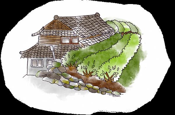 天空の茶屋敷