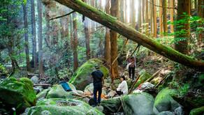 『福岡の避密の旅』とGo To トラベルを併用して天空の茶屋敷に500円で泊まろう。