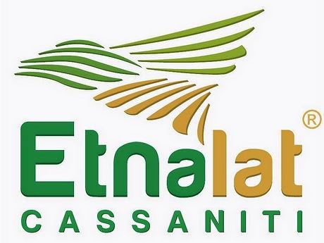 etnalat%2520logo%2520_edited_edited.jpg