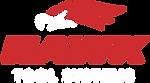 hawk-tools-logo.png