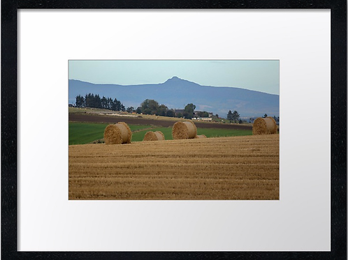 Bennachie over the farms  40cm x 30cm framed print or canvas pri