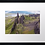 Thumbnail: Storr, Isle of Skye (1) 40cm x 30cm framed print or canvas print