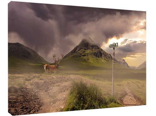 Monarch of Glencoe poster,canvas print, poster, print or framed print