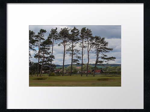 Carnoustie 13 Print or canvas, example 40cm x 30cm framed print