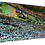 Thumbnail: Celtic fans YNWA. Example shown 40cm x 30cm framed print or canvas p