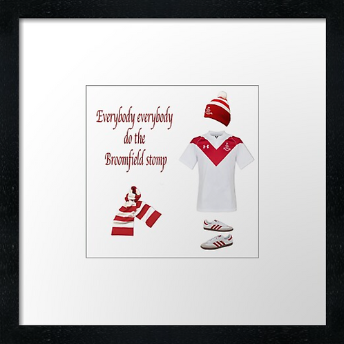 "Airdrie fc match ready (Example shown 10"" Framed print £21.50"