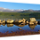 Thumbnail: Aviemore.  40cm x 30cm framed print or canvas pri