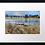 Thumbnail: Dunecht estate (2)  40cm x 30cm framed print or canvas pri