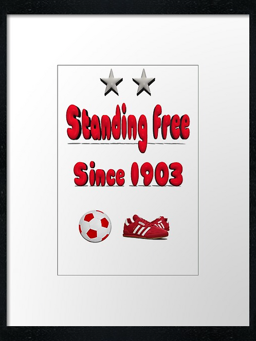 Aberdeen FC, Stand Free (4) print or canvas print