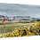 Thumbnail: Carnoustie 1 Print or canvas, example 40cm x 30cm framed print