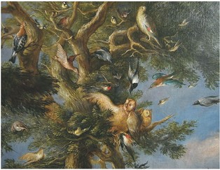 V. V. Reiner, Ptactvo v krajině