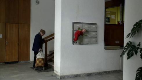 Po sametu / Tomáš Vaněk