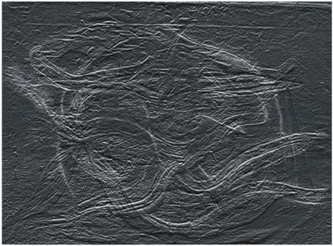 zvýrazněné linie spodní vrstvy malby - digitálně upravený snímek