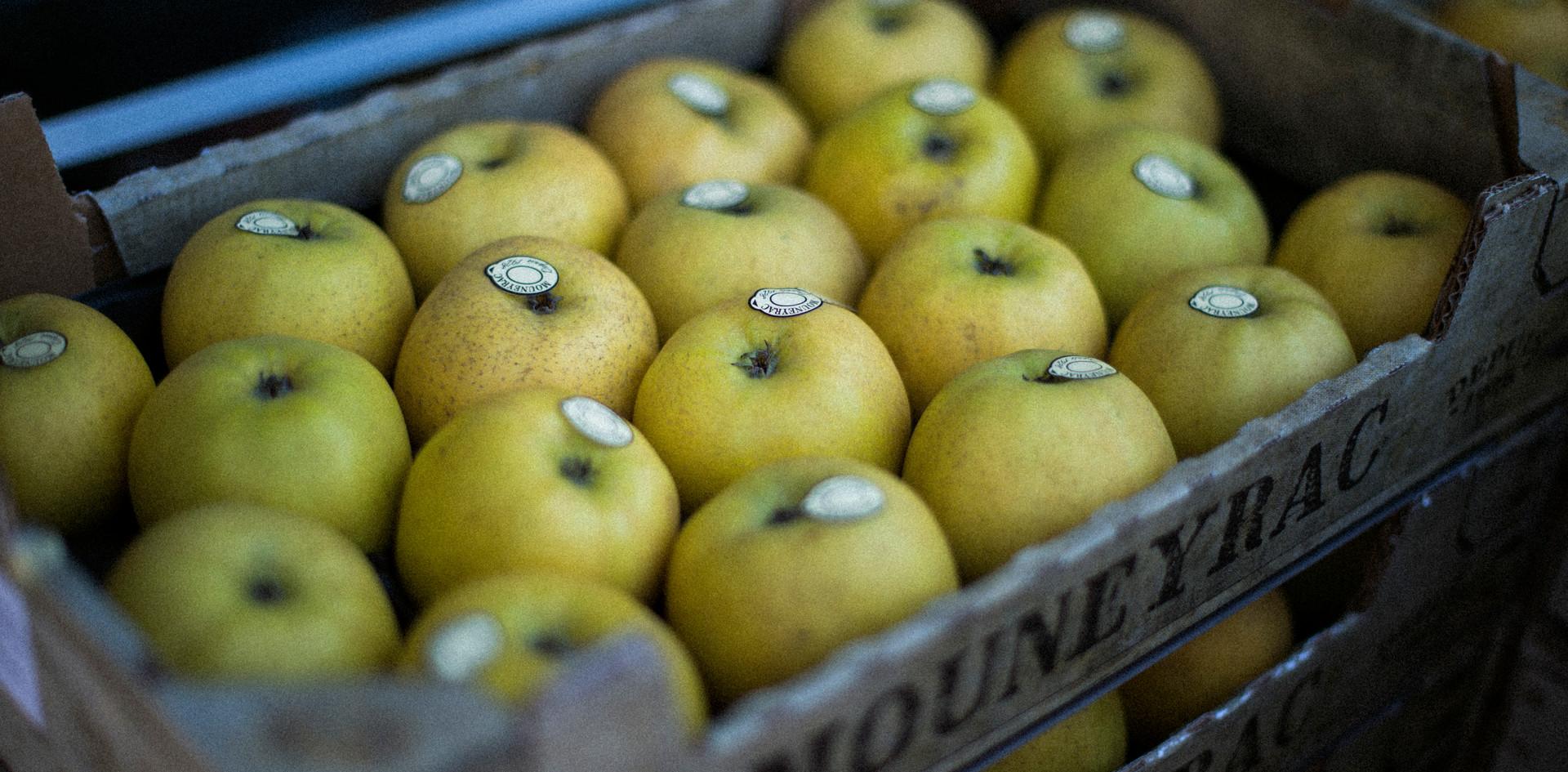Pommes Goldrush