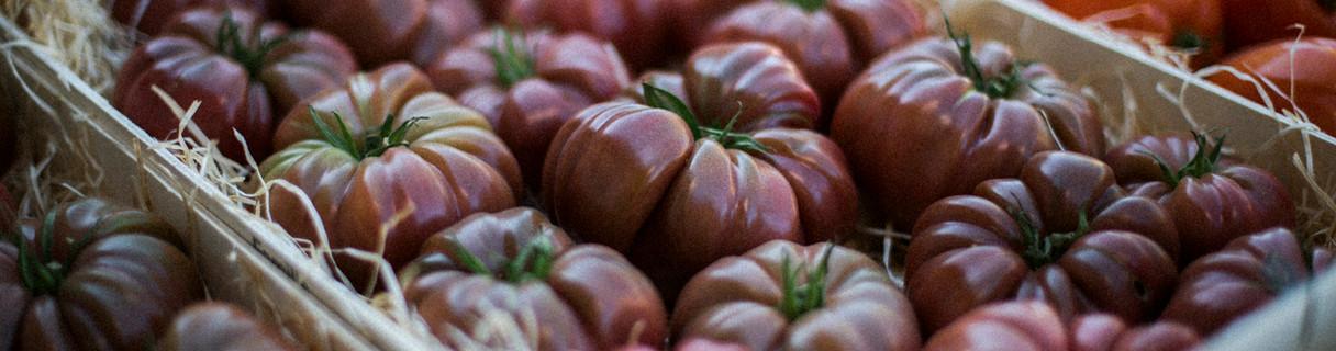 Tomates Marmande côtelées