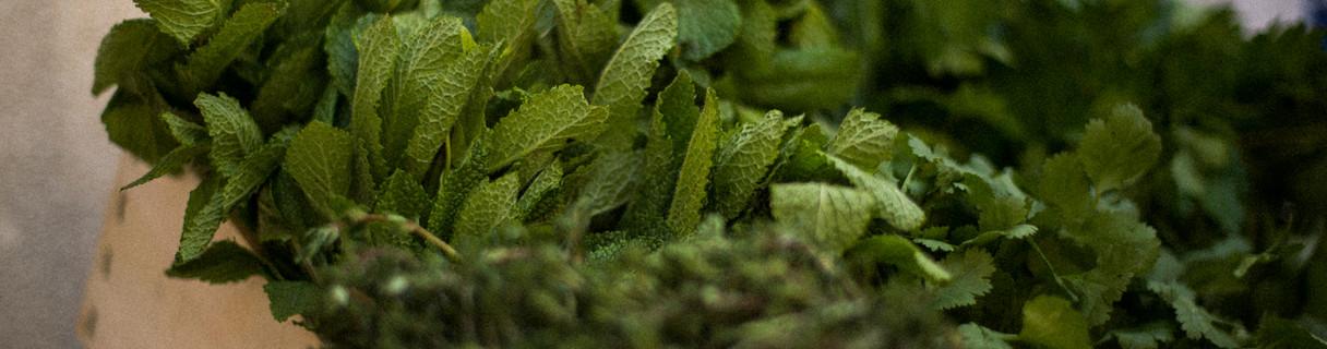 Herbes et jeunes pousses de Meaux