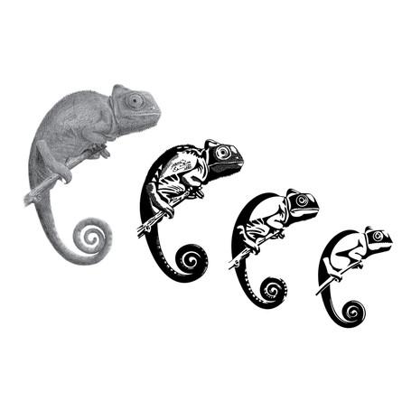 Dessin et symbolisation