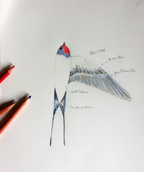 mathilde-nivet-set-designer-croquis_edit
