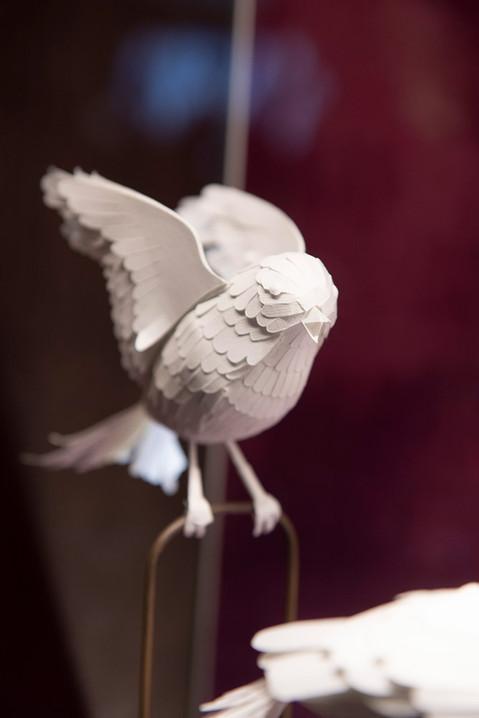 mathilde-nivet-vitrines-paper-art.jpg