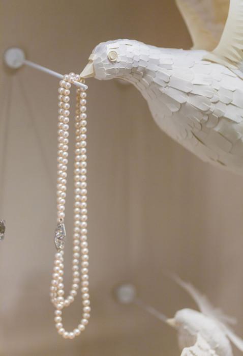 mathilde-nivet-oiseaux-papier-bm4_edited
