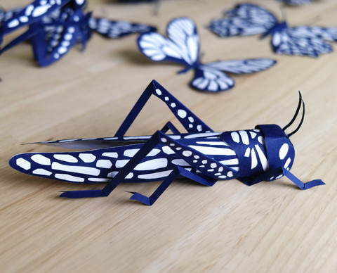 mathilde-nivet-paper-insects.jpg
