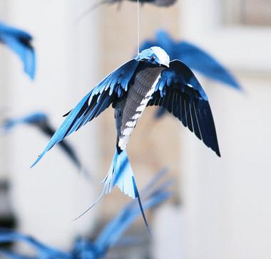 mathilde-nivet-paper-birds-3_edited.jpg