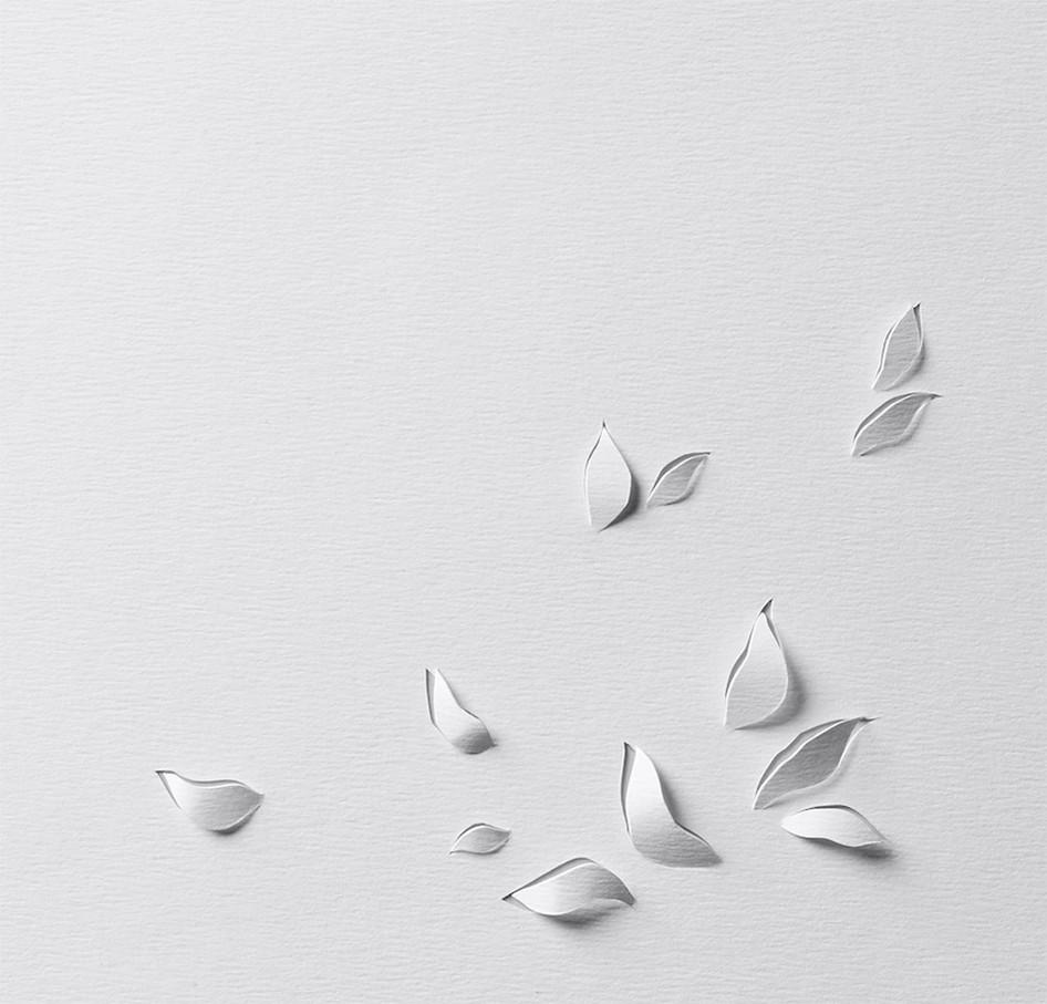 mathilde-nivet-paper-art-nature.jpg